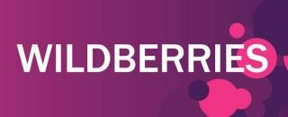 Case study: Как компания Wildberries решает задачи клиентской аналитики?