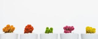 Иконки — простой способ удержать внимание